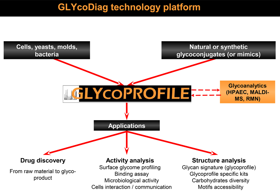Glycodiag technology platform