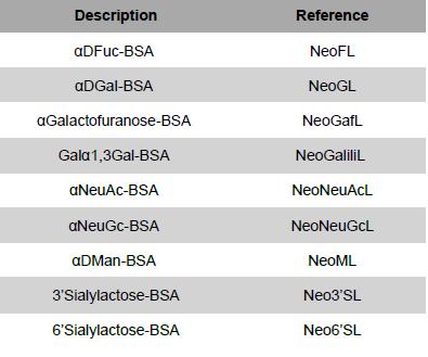Monosaccharide spacer neoglycoprotéins